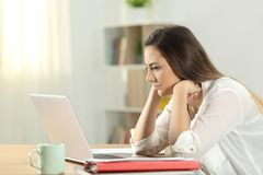 Concentrated student reading online content. On a desktop at home Royalty Free Stock Photos