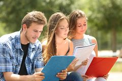 Concentrated students memorizing in a campus park royalty free stock photo