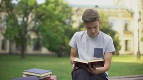 Concentrated teenager reading book in park on bench, preparing for exams stock footage