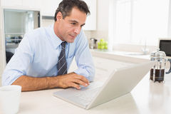 Concentrated well dressed man using laptop in kitchen Royalty Free Stock Image