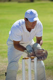 Concentrated wicketkeeper standing behind stumps Stock Photo