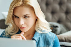 Concentrated woman using laptop at home Royalty Free Stock Images