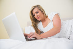Concentrated woman using a laptop lying on her bed Royalty Free Stock Photo
