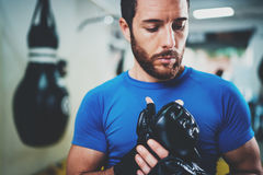Concentrated Young athlete tying black boxing gloves.Bearded Boxer man prepairing before kickboxing training session in. Gym. Blurred background. Horizontal royalty free stock photography