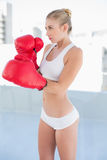 Concentrated young blonde model exercising with boxing gloves Stock Images