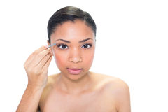 Concentrated young dark haired model plucking her eyebrows Royalty Free Stock Photo