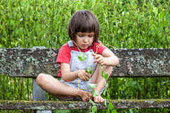 Concentrated young girl playing with ivy stems on mossy bench Royalty Free Stock Photos