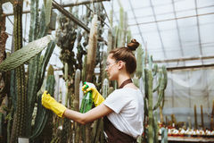 Concentrated young lady in glasses standing in greenhouse royalty free stock photos