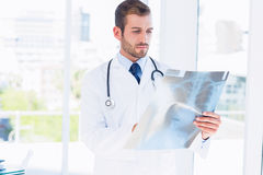 Concentrated young male doctor examining xray Stock Photography