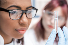 Concentrated young scientist in eyeglasses holding test tube with reagent in chemical laboratory Royalty Free Stock Photos