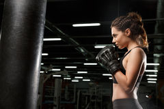 Concentrated young strong sports lady boxer. Image of concentrated young strong sports lady boxer make boxing exercises in gym and looking aside royalty free stock photography