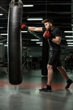 Concentrated young strong sports man boxer make exercises. Image of concentrated young strong sports man boxer make exercises in gym and looking aside royalty free stock images