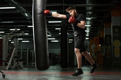 Concentrated young strong sports man boxer make exercises. Photo of young strong sports man boxer make exercises in gym and looking aside royalty free stock photos