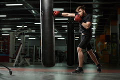 Concentrated young strong sports man boxer make exercises. Picture of concentrated young strong sports man boxer make exercises in gym and looking aside stock photo