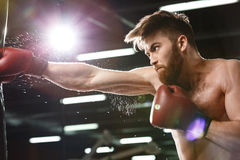 Concentrated young strong sports man boxer. Photo of emotional young strong sports man boxer make exercises in gym and looking aside royalty free stock photography