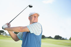 Concentrating golfer taking a shot Stock Image