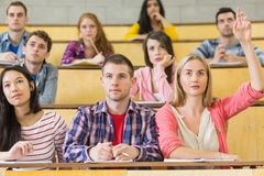 Concentrating students at the lecture hall Stock Photos