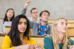 Concentrating students at the lecture hall Royalty Free Stock Photo