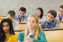 Concentrating students sitting at lecture hall Royalty Free Stock Images