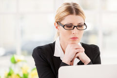 Concentrating at work. Stock Photos