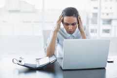Concentrating young businesswoman working on her laptop sitting at her desk Royalty Free Stock Image