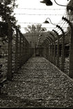 Concentration camp - Auschwitz-Birkenau,history Royalty Free Stock Images