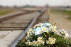 Concentration Camp Auschwitz Birkenau. Stock Photos