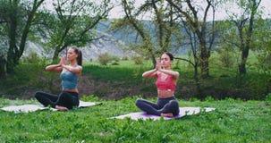 Concentrato due signore alla natura nel mezzo di bello paesaggio che fa il tempo di meditazione di yoga sono concentrati video d archivio