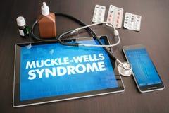 Concentrato medico di diagnosi di sindrome di Muckle-pozzi (malattia cutanea) illustrazione vettoriale