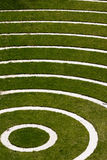 Concentric circles. On a grass field royalty free stock images