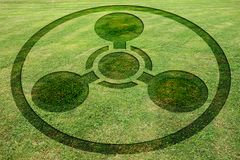 Concentric circles symbols fake crop circle meadow. Concentric circles symbols fake crop circle in the meadow stock illustration