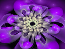 Concentric Flower Center, fractal abstract background Stock Image