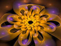 Concentric Flower Center, fractal abstract background Royalty Free Stock Photo