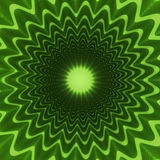 Concentric flower Stock Image