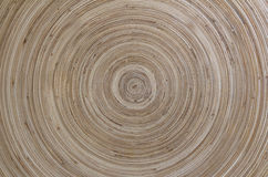 Concentric patterns of wood Royalty Free Stock Image