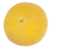 Concentric shaped yellow melon rind Royalty Free Stock Photography