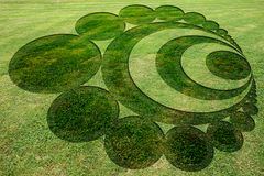 Concentric spirals symbols fake crop circle meadow. Concentric spirals symbols fake crop circle in the meadow stock illustration