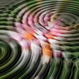 Concentricidad Fotografía de archivo libre de regalías
