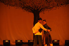 Concentrische boom-2011 dansende het Overlegpartij van de klassengraduatie Royalty-vrije Stock Fotografie