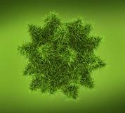 Concepção das bactérias, do vírus ou do fago 3d Imagem de Stock Royalty Free