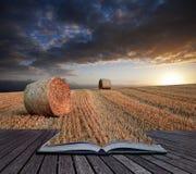 Concep creativo de la hora de heno de las balas del paisaje de oro hermoso de la puesta del sol Foto de archivo