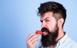 Concept érotique Plaisir oral C'est comment été de goûts Équipez le hippie sexy beau avec la longue barbe léchant la fraise image stock