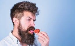 Concept érotique Plaisir oral C'est comment été de goûts Équipez le hippie sexy beau avec la longue barbe léchant la fraise photographie stock