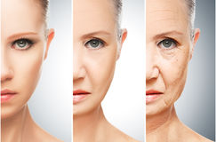 Concept of aging and skin care. Face of young woman and an old woman with wrinkles royalty free stock photography