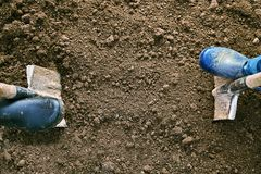 Concept of the agricultural work. Male and female feet in rubber shoes digging ground with shovels in the earth. View from above Royalty Free Stock Images