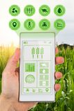 Concept for agritech farmer accessing agricultural app. Smart agriculture and agritech industry concept showing farmer with smartphone in field using app to read stock photo