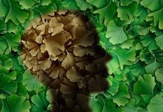 Concept Of Alzheimers. Concept of alzheimer disease with a Ginkgo biloba leaf background and a human head representing the dementia symptoms as cognitive loss of vector illustration