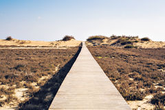 Concept of ambition, achievement and long way - wooden beach boardwalk path. Brown wooden beach boardwalk path Far away Stock Photo
