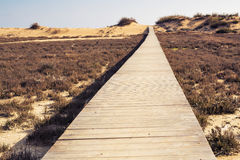 Concept of ambition, achievement and long way - wooden beach boardwalk path. Brown wooden beach boardwalk path Far away Stock Photography