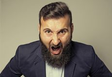 Concept of anger. Portrait of a screaming bearded man in a business suit royalty free stock photography